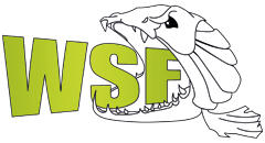 World Street Fishing Logo